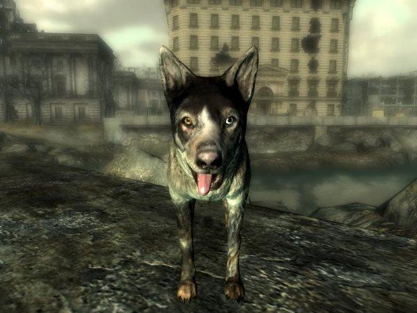 Dogmeat – Fallout