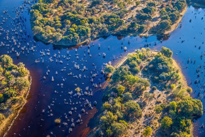 Okavango Delta,