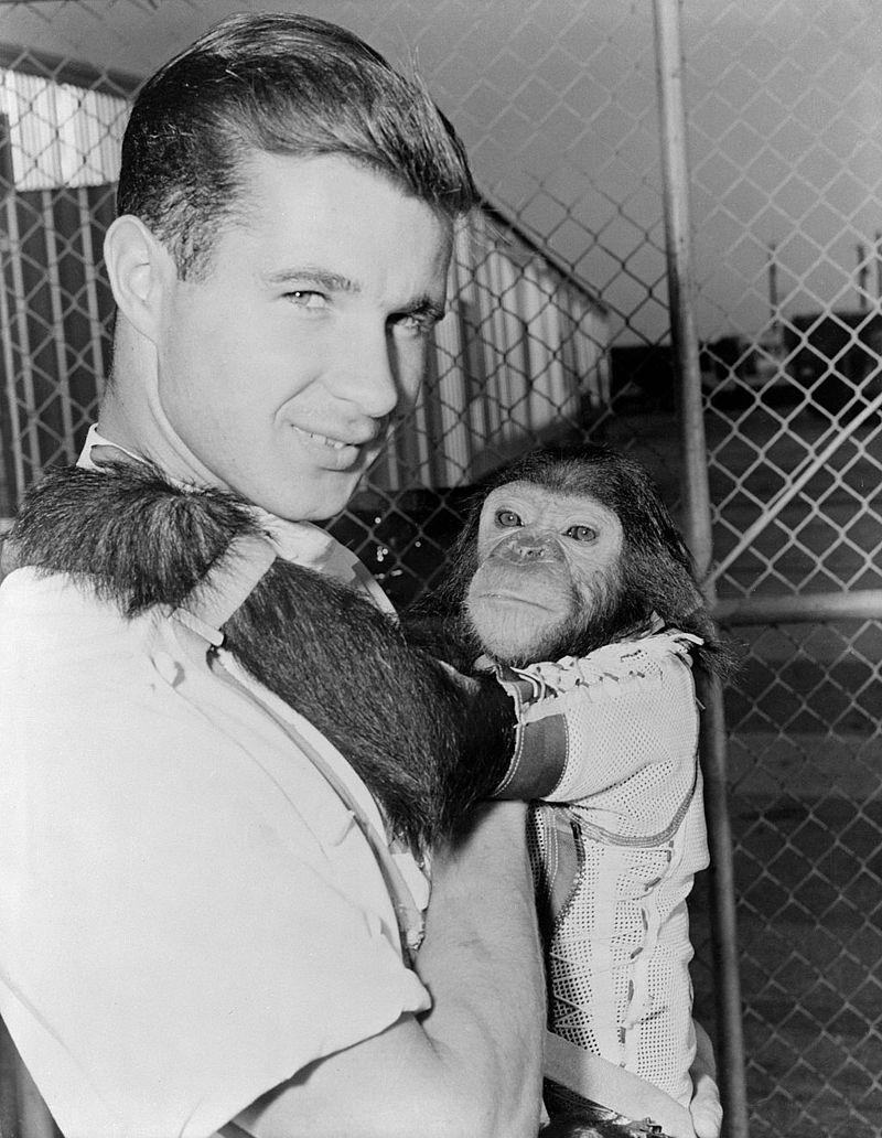 Enos the chimpanzee