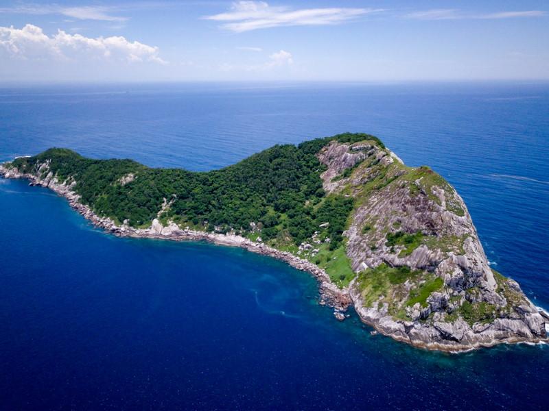 Ilha da Queimada Grande