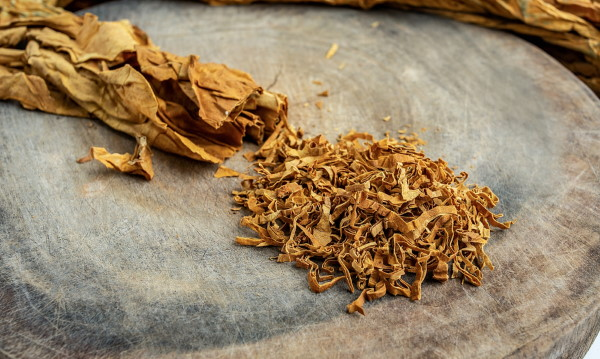 Tobacco good for you